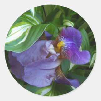 Ivy and Iris Classic Round Sticker