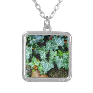 Ivy and Stone Silver Plated Necklace