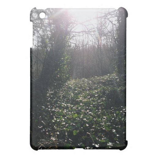 Ivy and Sunbeams. Case For The iPad Mini