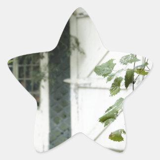 Ivy Barn Star Sticker