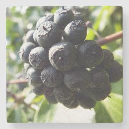 Ivy Berries Stone Coaster