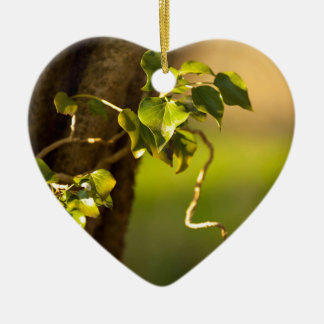 ivy ceramic ornament