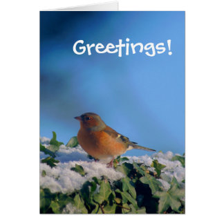 Ivy Chaffinch Greetings Card