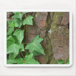 Ivy Climbing Tree Bark in the Rain Nature Mouse Pad