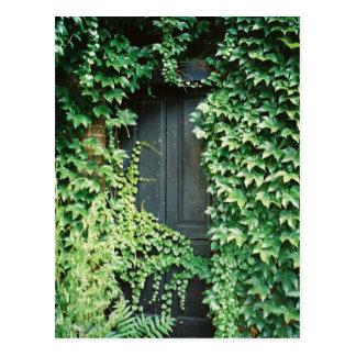 Ivy Door Postcard