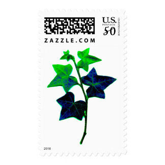 Ivy Fine Art Nature Photo Postage