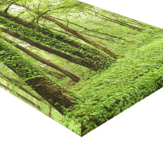 Ivy forest Gloss Wrapped Canvas