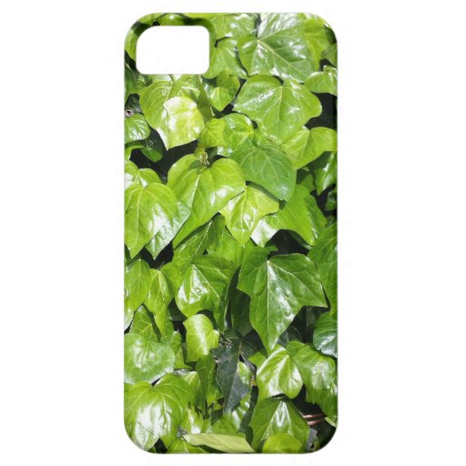 Ivy iPhone 5 Cover