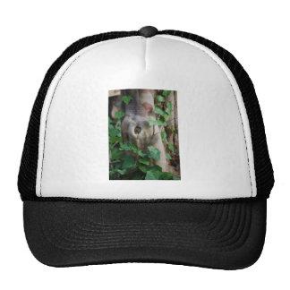 ivy knot tree trunk trucker hat