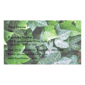 Ivy Leaves Business Card