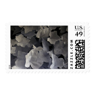 Ivy leaves, infrared photo postage