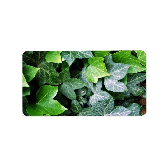 Ivy Leaves Label