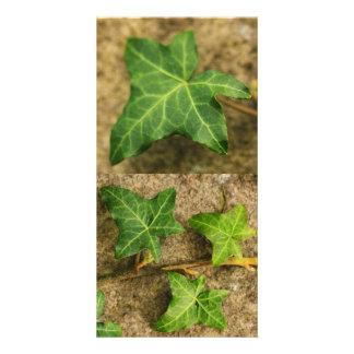 Ivy Leaves Photocard Card