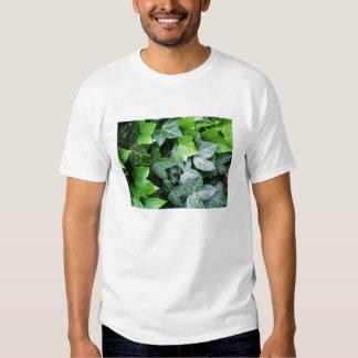 Ivy Leaves T Shirt