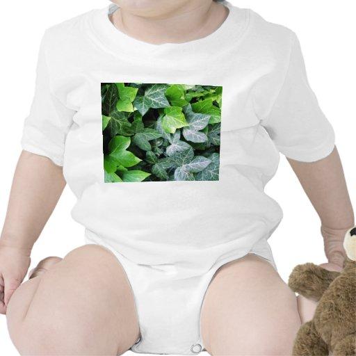 Ivy Leaves Tees