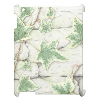 Ivy on a Dry Stone Wall in Pencil iPad Case