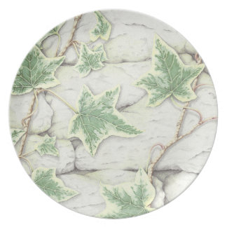 Ivy on a Dry Stone Wall in Pencil Melamine Plate