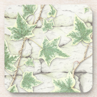 Ivy on a Dry Stone Wall in Pencil Plastic Coasters