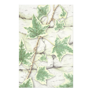 Ivy on a Dry Stone Wall in Pencil Stationery