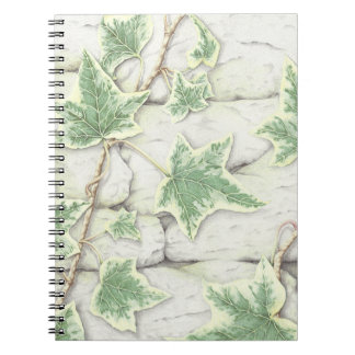 Ivy on a Dry Stone Wall Pencil Notebook 80 pages