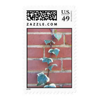 ivy on a wall stamp