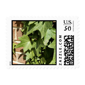 Ivy on Brick Postage