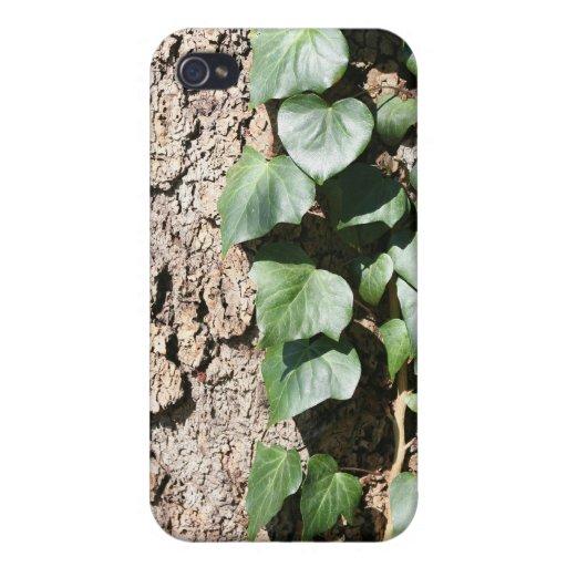 Ivy on tree iPhone 4/4S cases