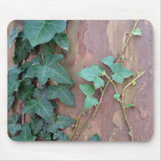 ivy on tree mouse pad