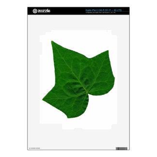 Ivy Decal For iPad 3