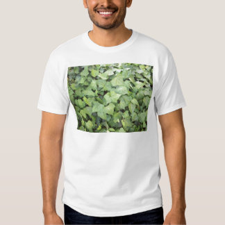 Ivy T Shirt