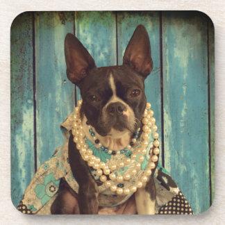Ivy the Boston Terrier Coaster