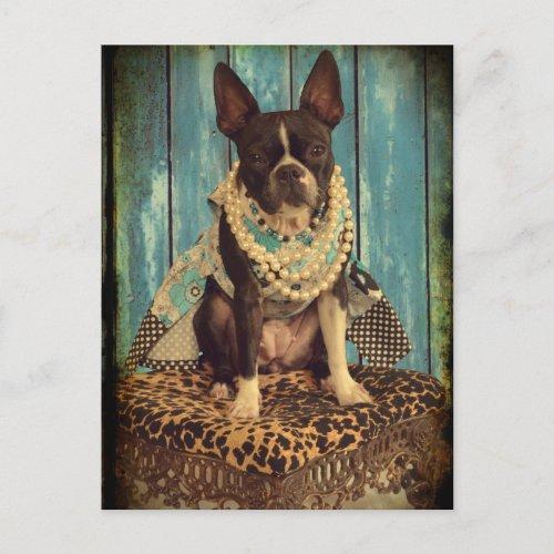 Ivy the Boston Terrier Postcard