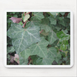 Ivy Tree Mouse Pad