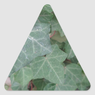 Ivy Tree Triangle Sticker