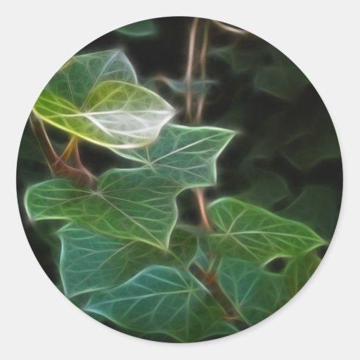Ivy Vine 10 Stickers