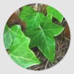 Ivy Vine on Palm Tree 5 Stickers