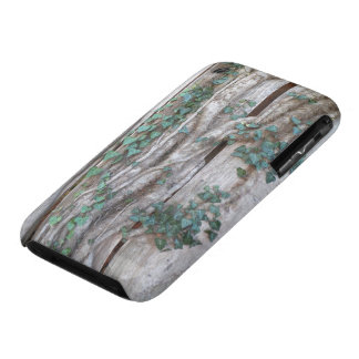 Ivy & Vines on Wood Fence iPhone 3 Cases