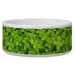 Ivy Wall Background Dog Water Bowl