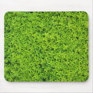 Ivy Wall Background Mouse Pad