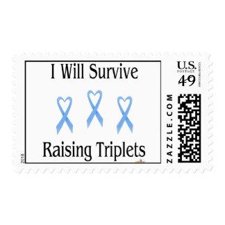 IWillSurviveRaisingTripletsBoyBoyBoy2 Postage Stamp