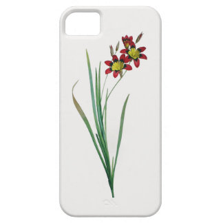 Ixia Tricolor iPhone SE/5/5S Barely There Case
