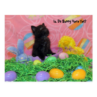 Iz Da Easter Bunny Here Yet? Postcard