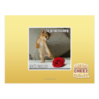 Iz practising mah tango postcard