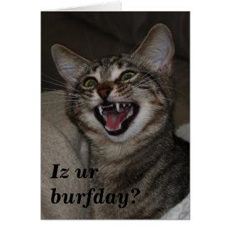 Iz ur burfday? humorous photo birthday card