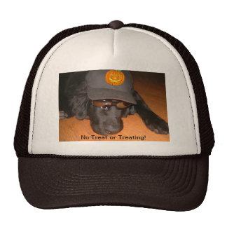 Izquierda detrás de este gorra de Halloween