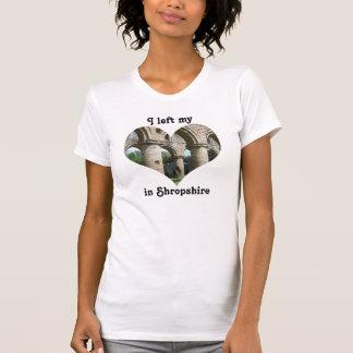 Izquierda mi abadía Shropshire Inglaterra de Camisetas