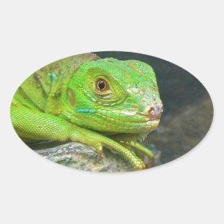 Izzy Iguanna Oval Sticker