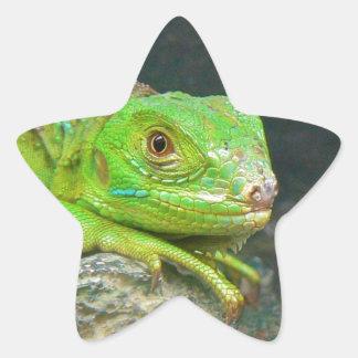 Izzy Iguanna Star Sticker
