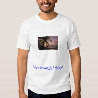 j0145116, I love beautiful things! T-Shirt