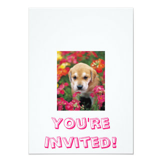 j0227548, You're Invited! Card